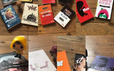 Quelques brèves de Fabienne 2020-11 +++ – littérature jeunesse